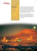 Bergbau und Mineralaufbereitung - Flowserve - Seite 4