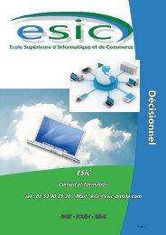 Décisionnel - Groupe ESIC