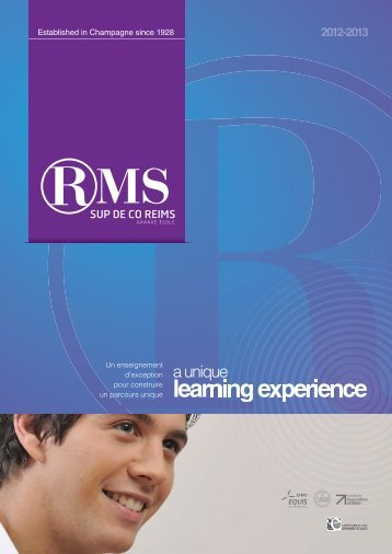 learning experience - RMSPro - Reims Management School