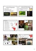 Etiopská zoogeografická oblast - KZR - Page 2