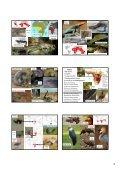 Etiopská zoogeografická oblast - KZR - Page 3