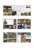 Etiopská zoogeografická oblast - KZR - Page 4