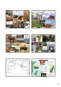 Etiopská zoogeografická oblast - KZR - Page 5