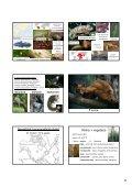 Etiopská zoogeografická oblast - KZR - Page 6