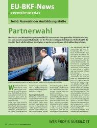 Teil 6: Auswahl der Ausbildungsstätte - EU-BKF.de