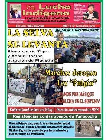 Lucha_Indigena_102