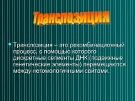 Транспозиция2010 October.pdf