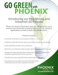 N5499835A Green Mining Piece Sell Sheet.indd - Phoenix Products