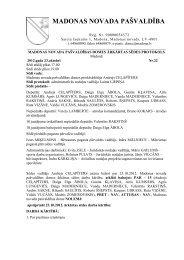 Protokols - Madonas novada pašvaldība