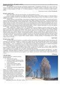 Janvāris - Birzgales pagasts - Page 2