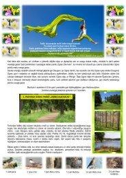 Ogres un Ikšķiles tūrisma attīstības aģentūra