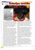2010.g. oktobris, novembris Nr.2 - Jelgavas 1. ģimnāzija - Page 4
