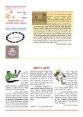 avīze_aprīlis_2012 - Slokas pamatskola - Page 4