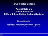 Presentation as PDF Download - Deb-bbraun.de
