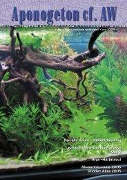 Aponogeton cf. AW 1/2006 - Aqua-Web