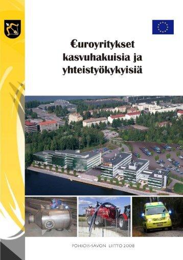 ohjelman yritystukia saaneista yrityksistä 2000-2007, Erkki