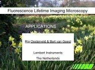 Fluorescence Lifetime Imaging Microscopy ... - Photon Lines