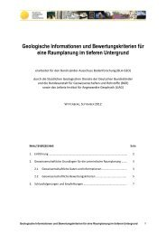 Geologische Informationen und Bewertungskriterien ... - InfoGEO.de