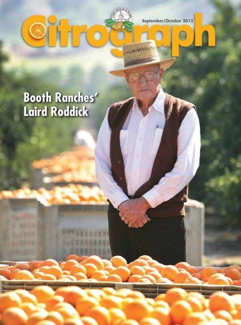 *Original* FALLBROOK San Diego County Lemon Crate Label NOT A COPY!