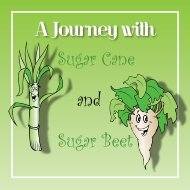 a-journey-with-sugar-cane-and-sugar-beet