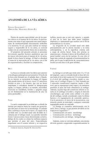 Anatomía y Fisiología de Vía aérea inferior - AAIBA