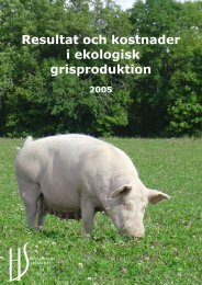 Resultat och kostnader i ekologisk grisproduktion - HS Konsult
