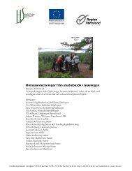 Anteckningar från projektträff i Glaskogen, augusti 2008 (1940 kb, .pdf)