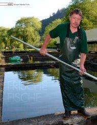 Frische Fische - Jan Bergrath