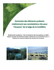 taïga de la Cordillère - Species at Risk