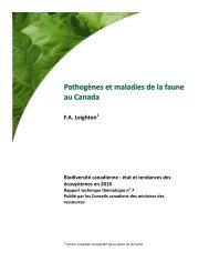 Pathogènes et maladies de la faune au Canada - Species at Risk