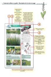 Comment utiliser ce guide : Description de la mise ... - Species at Risk