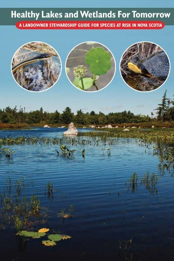 Healthy Lakes and Wetlands For Tomorrow - Species at Risk