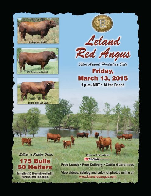 Leland Koester Red Angus Sale Catalog 2015