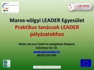PPT - Maros Völgyi Leader Egyesület