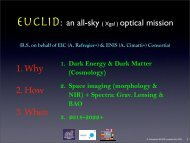 Euclid:an optical view of the whole extragalactic sky - Square ...