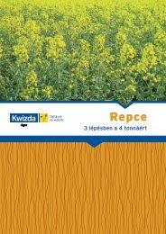 Repce Repce - Kwizda
