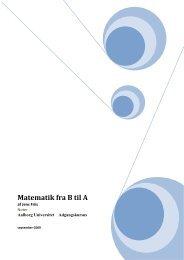Matematik fra B til A - Aalborg Universitet