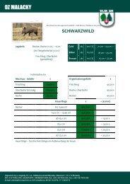 rýchlosť datovania Lausanne Švajčiarsko