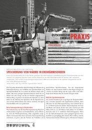 EnergiePraxis April 2012.pdf - Energiebündel Liechtenstein