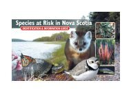 Species at Risk in Nova Scotia