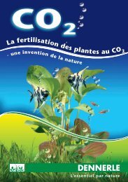Lafertilisationdesplantes au CO2 - Dennerle