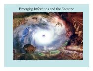 Emerging Infections and Ecotones - Medical Ecology
