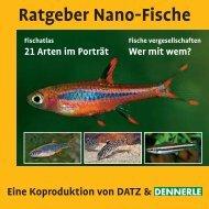 Ratgeber Nano-Fische - Dennerle