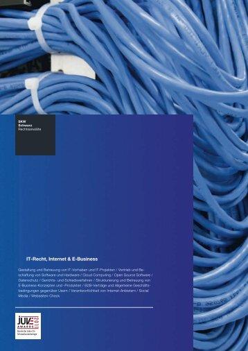 IT-Recht, Internet & E-Business - SKW Schwarz