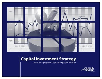 ConsolidatedProposedCapitalInvestmentStrategy2015-2017_2