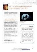 Dossier presse - Musée de l'Ours des Cavernes en Chartreuse - Page 3