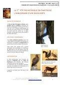 Dossier presse - Musée de l'Ours des Cavernes en Chartreuse - Page 6