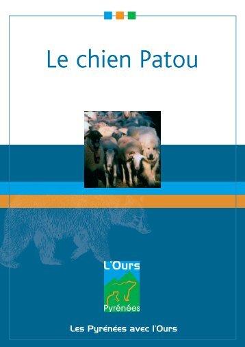 Le chien Patou - La Buvette des Alpages