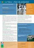 Le chien Patou - La Buvette des Alpages - Page 2