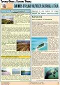 Revista_17_março_2011 - Revista Multicultural Brasil & Italia - Page 7